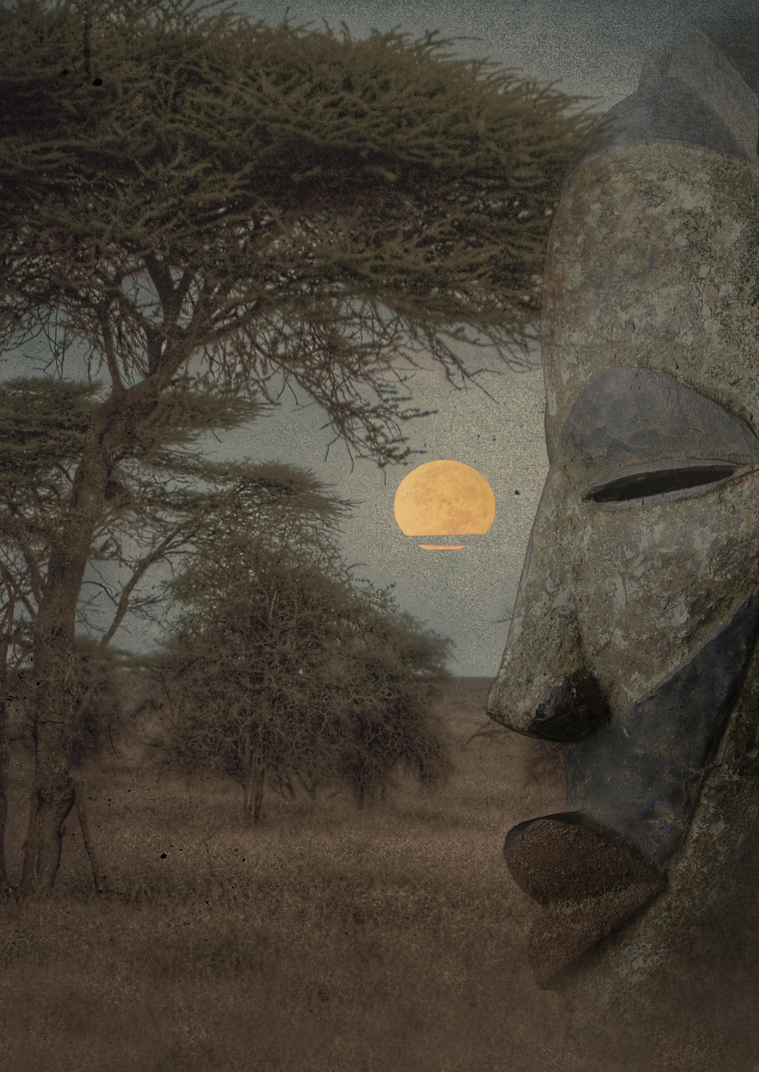 grenadille-dafrique-3